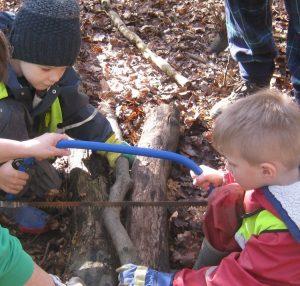 Forest Activities 5